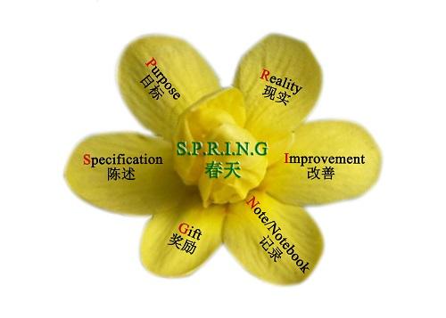 Wang Hua coaching model