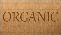 教练会谈模式: ORGANIC