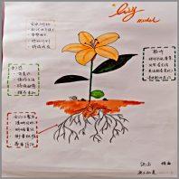 Chunli Wang Coaching Model